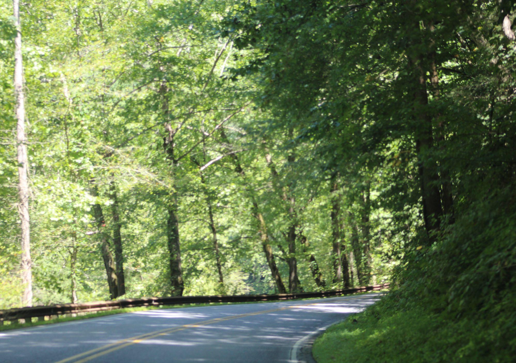 Road Drifters